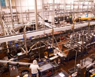 Food Manufacturing and Environmental monitoring