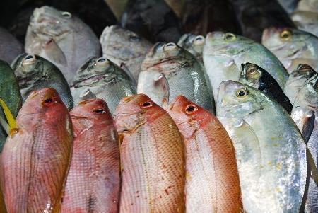 Why Australia's food labelling laws are failing to protect our health