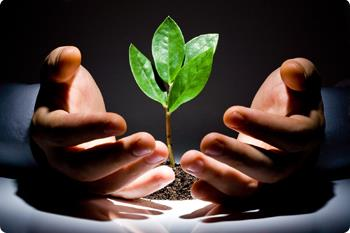 &#39;Lead nurturing&#39; - what&#39;s it all about?