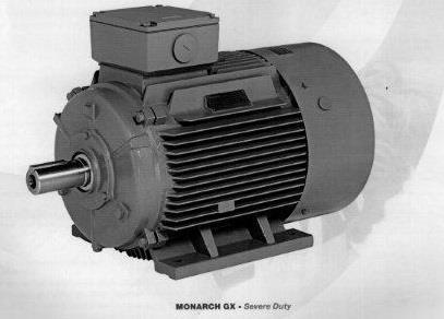 Electric Motors | Teco Monarch