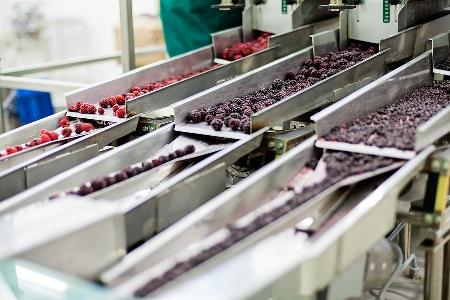How to avoid the confusion of site selection for food processing