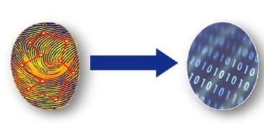 Multispectral Imaging Technology and Biometric Security explained.